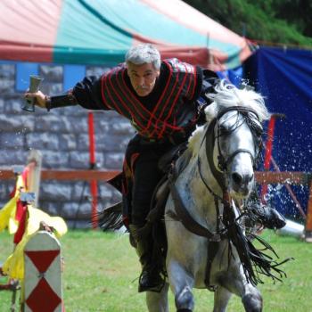 Das Ritter-Turnier kommt mit Edlen Pferden nach Maintal-Bischofsheim