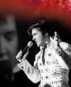 Elvis  - Das Musical in Frankfurt am Main  -- Tickets sichern, wird bestimmt voll !!